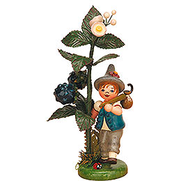 Autumn child blackberry  -  13cm / 5inch